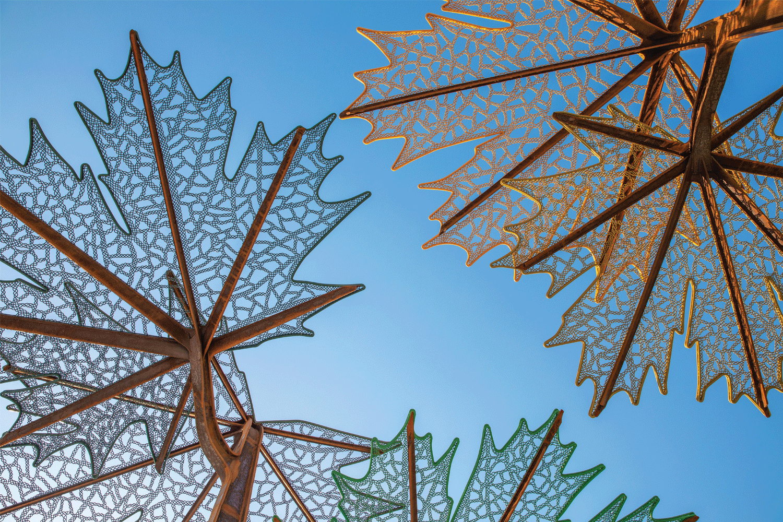 lace-fence-trellis_0001_Layer-2
